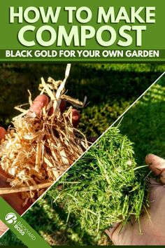 Compost turns waste into beautiful plants and greener grass. With a small corner of your yard you can generate this black garden gold with your trash.