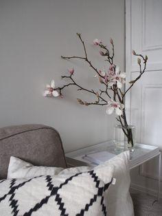 Magnoliahullun muistiinpanot