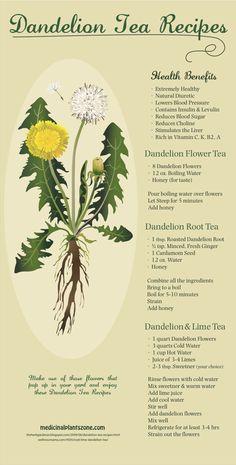 dandelion_teas