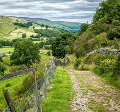 A walk down the lane in Swaledale, Yorkshire Dales.