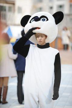 Kim Hyun Joong in a panda suit
