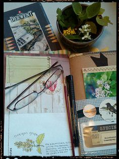 Working in the journal by Naturegrl64 (Diana), via Flickr