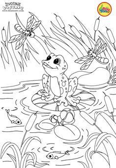 Animals Coloring Pages for Kids - Free Preschool Printables - Životinje Bojanke - Animal Coloring Books by BonTon TV #coloringpages #coloringbooks #animals #bontontv #bojanke