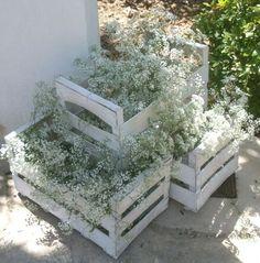 Decorar con cajas de fruta