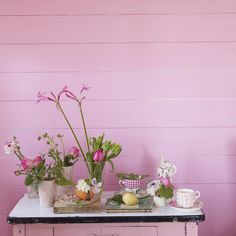 Designers Guild 'First Blush' paint