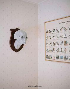 Aliens for decoration: www.aliens4sale.com