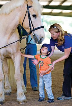 Horses and healing: A story about how hippotherapy can help and a short glossary.
