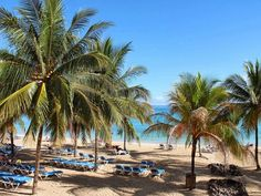 Ocho Rios Jamaica All inclusive resort day pass Cruise Excursion Reservations