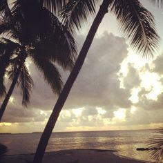 Phoneography Challenge: Sunset on the island of Tikehau, French Polynesia  @Photojojo    @Brit Morin