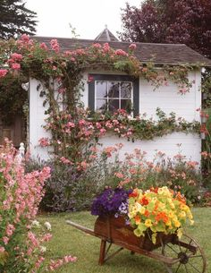 cottage--Those climbing roses make such a huge impact, along with that container planting.  Not a large cottage garden--but loaded with charm!