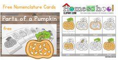 PumpkinCardsHeader