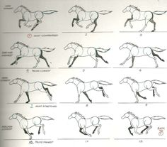 4ae8c-horsegallop.jpg (939×824)