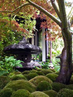 #Kazuyuki #Ishihara #Japanese #garden #Chelsea