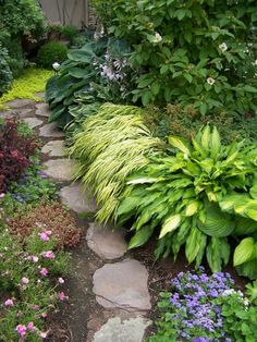 Beautiful shade border -- The narrow leaved Hosta is called Spritzer, I think. The yellow in the leaves echoes the Hakone grass nicely.