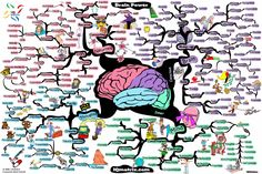 Mind power research team makes world first discoveries