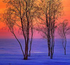 Winter seashore at dusk - ©Henri Bonell - www.flickr.com/photos/henribonell/2234967346/in/photostream/