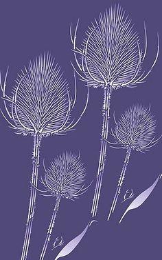 Wild Teasels Stencil Wild Thistle Teasel Stencils
