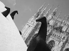 Un insolita Milano# Foto di Dodò