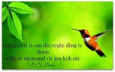 Integriteit is om die regte ding te doen selfs as niemand vir jou kyk nie C. Like You, My Love, Afrikaans, Live Life, Me Quotes, In This Moment, Inspiration, Hummingbird, South Africa