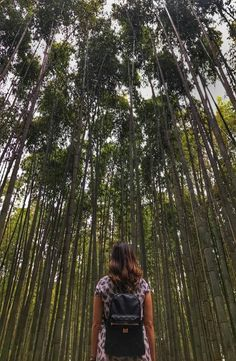 Kyoto's Arashiyama Bamboo Forest is located in western part of Kyoto near the base of the Arashiyama Mountains. How to get to Arashiyama Bamboo Forest Kyoto Japan, Backpacking, Bamboo, Shots, Kimono, Pictures, Photography, Photos, Backpacker