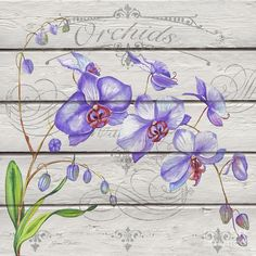 Purple Orchids-jp3924 Painting by Jean Plout