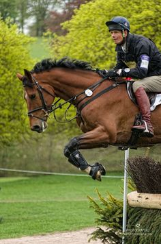 Willian Fox-Pitt (GBR), Chatsworth International Horse Trials 2015