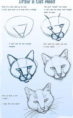 cómo dibujar una cabeza de gato 1                                                                                                                                                                                 Más