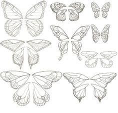 Schmetterlingszeichnungen zum Abnehmen