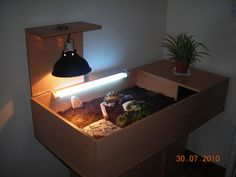tortoise cages and enclosures | Basking bulb for horsfield tortoise - Reptile Forums
