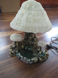 Mushrooms by a pond