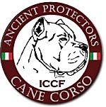 ICCF Registry - International Cane Corso Federation Registry - Cane Corso Registry