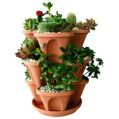 I pinned this Junior Stack-A-Pot Planter from the Green Thumb event at Joss and Main!