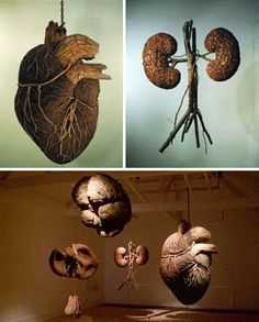 Dimitri Tsykalov - Dimitri has created a series of realistic organs made out of wood, including a brain, heart, and lungs. Hanging in an art exhibit, or on the wall, these surprisingly realistic creations are sure to catch your attention.