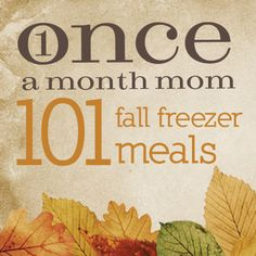 101 Fall Freezer Meals -- LOVE LOVE LOVE this site!