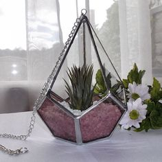 Pink Stained Glass Air Plant Terrarium