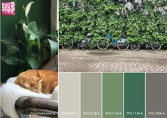 Fresh spring greens in this colour board. Contact us for more ideas and colours