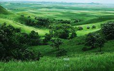 小清新绿色护眼美丽草原风光桌面壁纸(一)-风景壁纸 ...