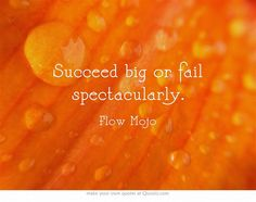Succeed big or fail spectacularly.  Flow mojo.org