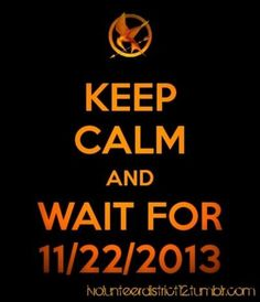 CATCHING FIRE.... TO FAR AWAY!!!  Today it will be exactly one year, 18 days, 4 hours, and 47 minutes. Yes, i AM that obsessive. OHGD person over here.