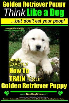 Golden Retriever Puppy   Think Like a Dog ~ But Don't Eat Your Poop!   Golden Retriever Puppy Obedience & Behavior Training  : Here's EXACTLY How to TRAIN Your Golden Retriever Puppy (Volume 1) >>> Check this awesome product by going to the link at the image.