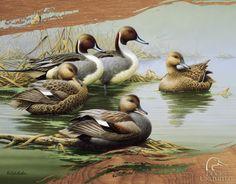 Ducks Unlimited - Morning Most Metal Tabela