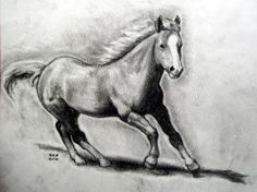 02af778ceabf Horse Drawing - finalprodigy © 2014 - Oct 12