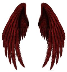 Transparent Red Wings PNG Clipart Picture