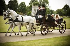 I have sort of always wanted a horse drawn carriage at my wedding. lol