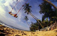 Swings by the beach