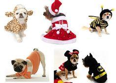 Roupas para cachorro - idéias e moldes                                                                                                                                                                                 Mais