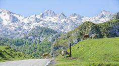Panorámica de l Parque Natural de los Picos de Europa.