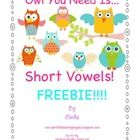 Bright, Colorful, Cute, Grab-Your-Heart Owls make vowels fun! A Short Vowel Owl Freebie! Pure excitement is generated when students s. Vowel Activities, Alphabet Activities, Word Skills, Owl Theme Classroom, Teaching Reading, Reading Skills, Teaching Ideas, Spelling Patterns, Short Vowels