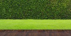 Fique a par dos conselhos da Diretora da Revista Jardins, Teresa Chambel, sobre os melhores procedimentos a ter em conta quando for cuidar da sua relva e fazer (ainda) mais inveja aos seus vizinhos! Veja o vídeo! #oleomac #oleomacportugal #OM #jardim #relva #podar #aparar #topiar #estilodevida #cuidados #verão