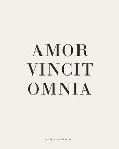 Liebessprüche lateinische Lateinische Zitate